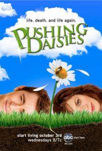 Pushing Dasies