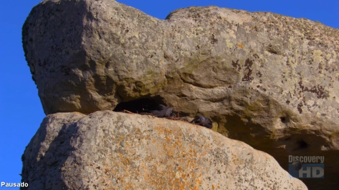 O amanhecer em Stonehenge pela Discovery HDTV